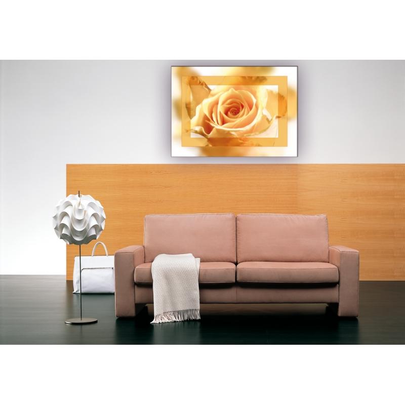 naturbilder blumenfotos blume rose bilder gelbe. Black Bedroom Furniture Sets. Home Design Ideas