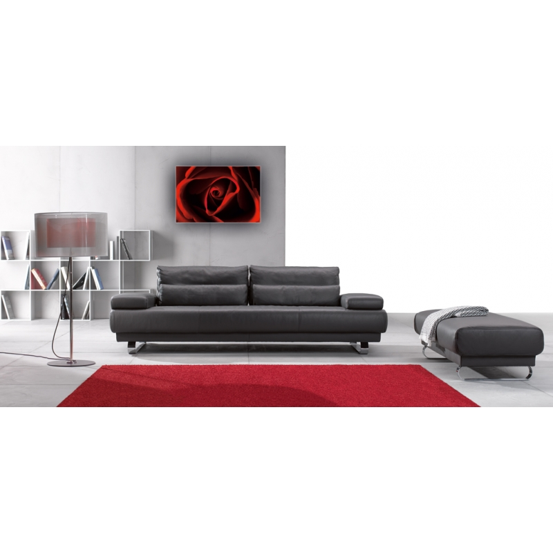 naturbilder blumenfotos blume rose bilder rot schwarz. Black Bedroom Furniture Sets. Home Design Ideas