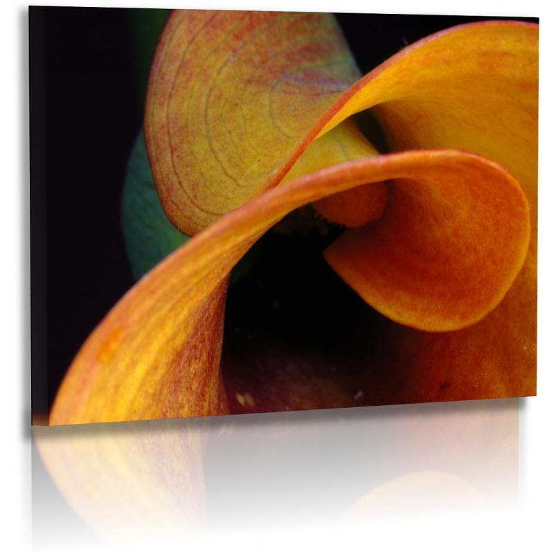 naturbilder blumenfotos calla blume abstrakte bilder orange. Black Bedroom Furniture Sets. Home Design Ideas