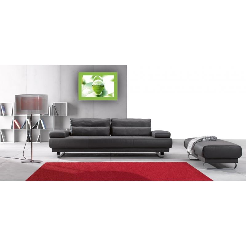 schmetterlinge bilder raupe metamorphose. Black Bedroom Furniture Sets. Home Design Ideas