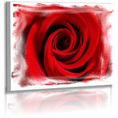 naturbilder blumenfotos blume rose abstrakte bilder. Black Bedroom Furniture Sets. Home Design Ideas